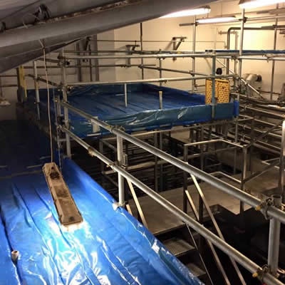Specialist and food hygiene scaffolding uk